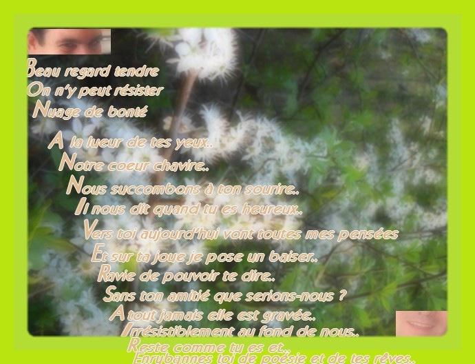 Carte olivier 6 avec du texte et encadrement